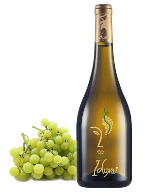 vino Iduna