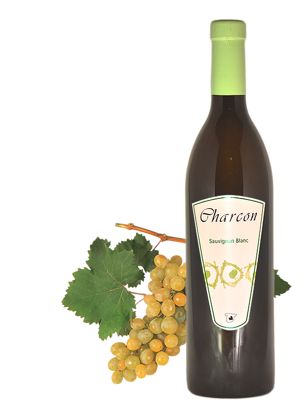 Charcon Sauvignon blanc