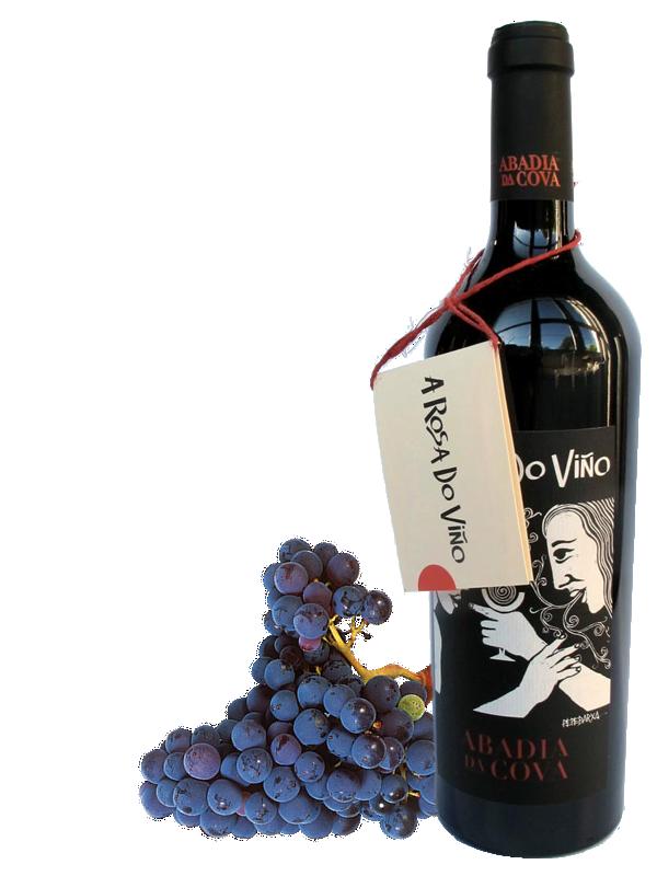 A rosa do Viño